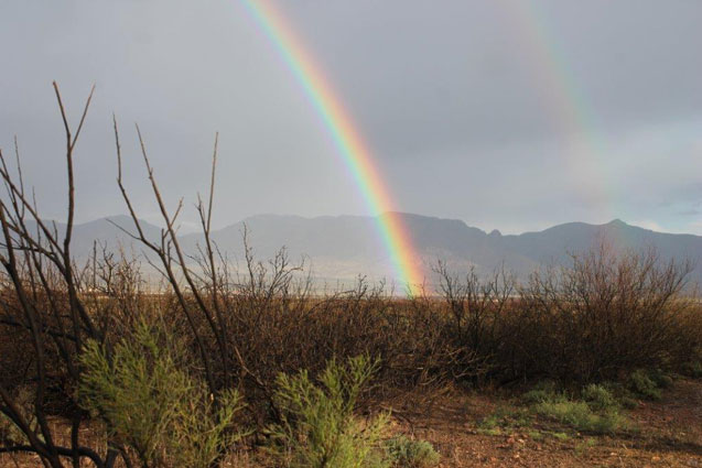 A rainbow in the San Simon Valley with the Peloncillo Mountains in the background